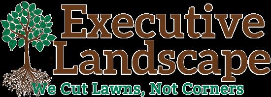 Executive Landscape